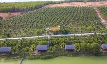 Bán 15000m2 đất Bình Thuận gần biển giá 50k/m2 có sổ đỏ