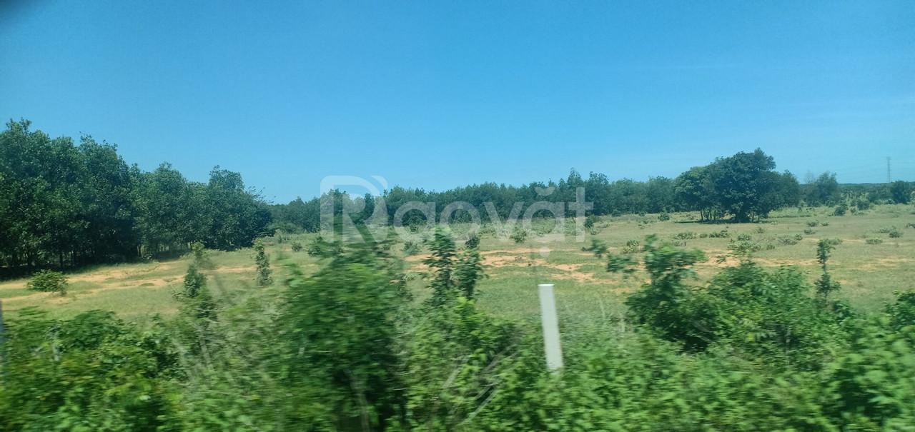 Bán lô đất nông nghiệp Phan Hiệp gần sông, gần biển chỉ 253tr sổ sẵn