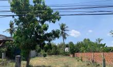 Bán đất mặt tiền đường nhựa Đồng Bà Thìn - Suối Cát 12M, Cam Thành Bắc