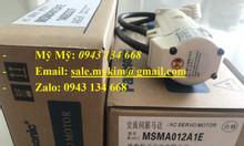 AC Servo Motor Panasonic MSMA022P1F
