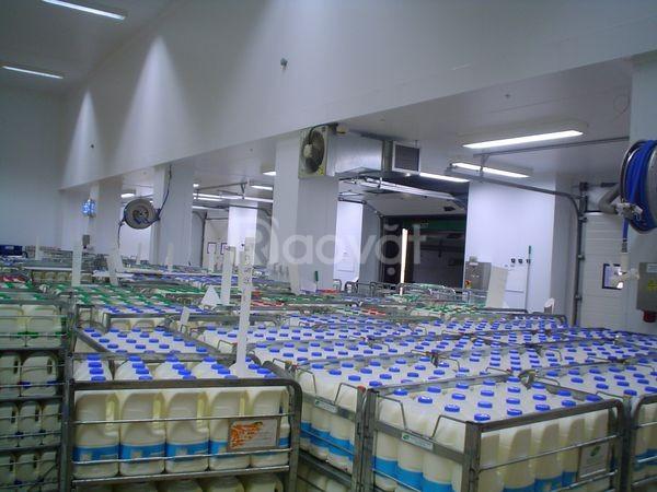 Thi công kho lạnh bảo quản sữa tươi tại Cần Thơ