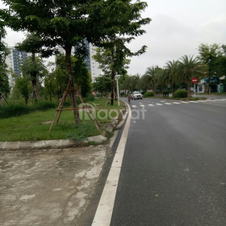 Bán liền kề A2.7 nhìn vườn hoa dự án Thanh Hà Cienco5 giá đầu tư