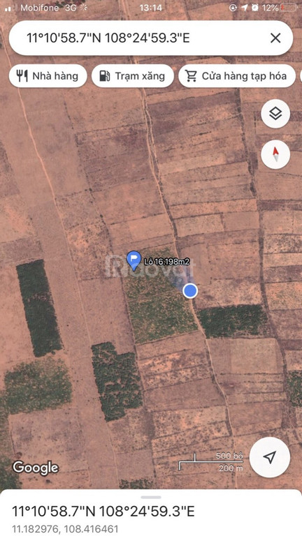 Bán 16198m2 đất trồng tràm huyện Bắc Bình giá 50k/m2 có sổ đỏ
