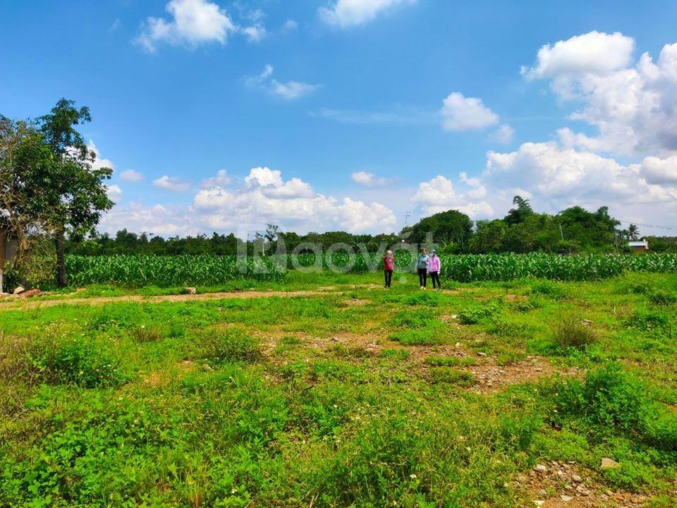 Đất Long Khánh 460m2 sổ hồng riêng giá 520 triệu