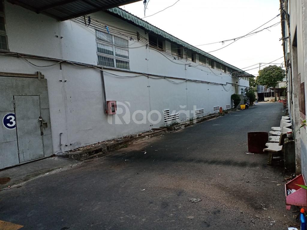Kho xưởng 6000-10000-20000m2 cho thuê Quận 12
