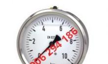 Đồng hồ đo áp suất Wika 213.53 năm 2020