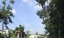 Bán gấp lô đất 355m2 Vĩnh Tân, TX Tân Uyên giá 750 triệu