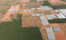 Bán 8000m2 đất Bình Thuận gần biển giá 400 triệu có sổ đỏ