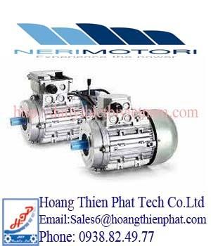 Động cơ cảm ứng ba pha Neri Motori