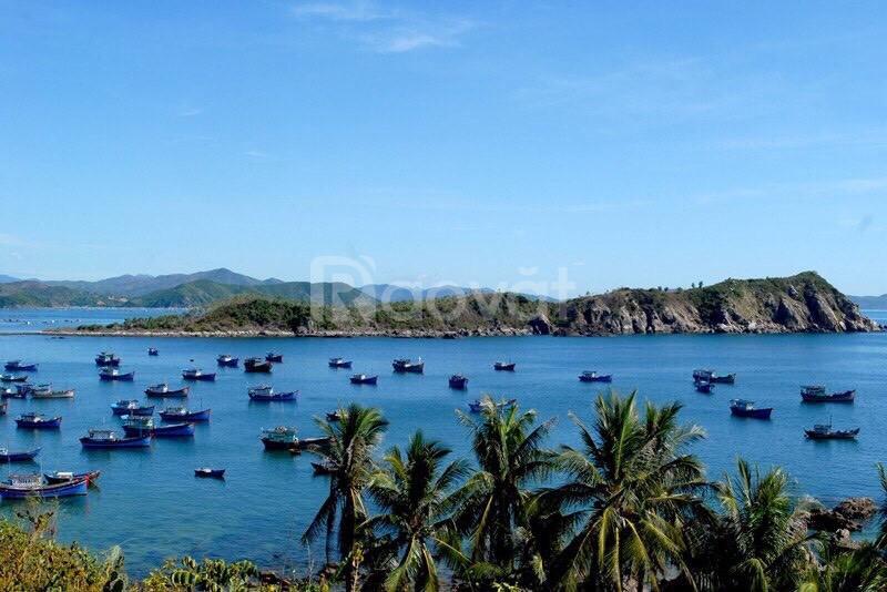 Đất biển sổ đỏ ngay trung tâm du lịch Phú Yên giá chỉ 7 triệu/m2