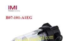 Bộ lọc Norgren B07-101-A1EG - Công ty Thiết Bị Điện Số 1