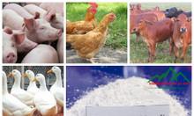 Tầm quan trọng của Canxi trong chăn nuôi