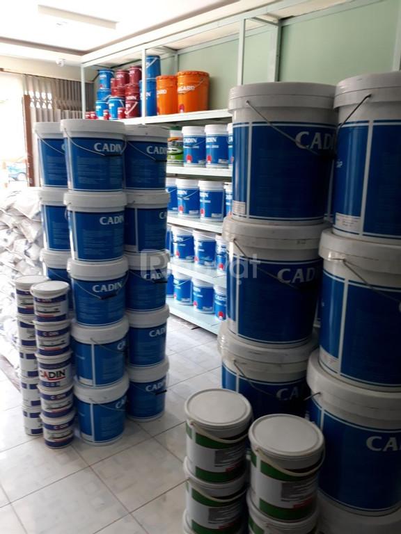 Đại lý chính hãng cung cấp sơn Epoxy Cadin gốc nước không mùi.