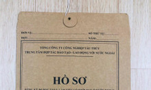 Xưởng in túi đựng phim, túi hồ sơ giá rẻ tại Hà Nội