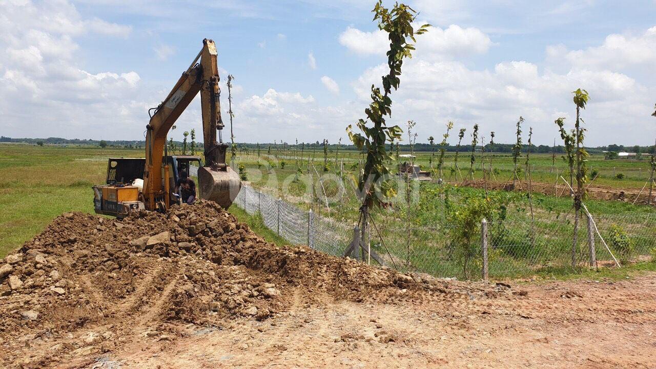 Đất đường Nguyễn Thị Rành Củ Chi