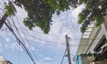 Cho thuê nhà nguyên căn, kp2, P. Hiệp Phú