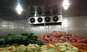 Ankaco lắp đặt kho lạnh bảo quản rau quả cung cấp cho chợ, siêu thị