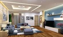 Căn hộ chung cư D'Capitale cho thuê giá rẻ