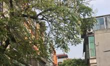 Bán nhà mặt ngõ 165 Dương Quảng Hàm, 68mx 5 tầng