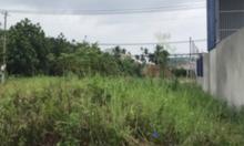 Cho thuê đất trống Hà Huy Giáp, quận12