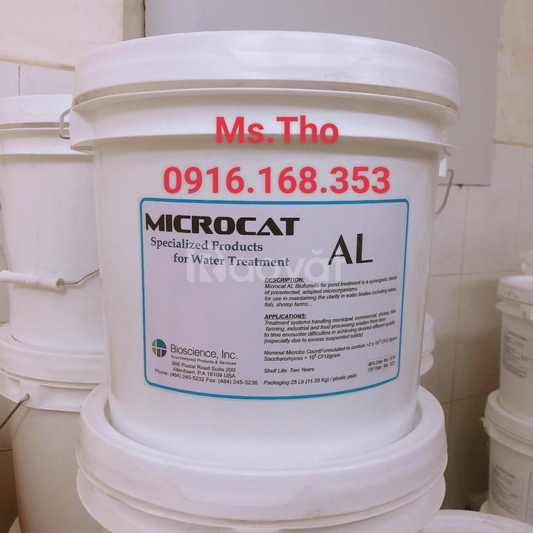 Microcat Al, vi sinh Mỹ, chuyên xử lý đáy ao