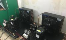 Ankaco bán cụm máy nén lạnh  Kulthorn AW2495ZKP