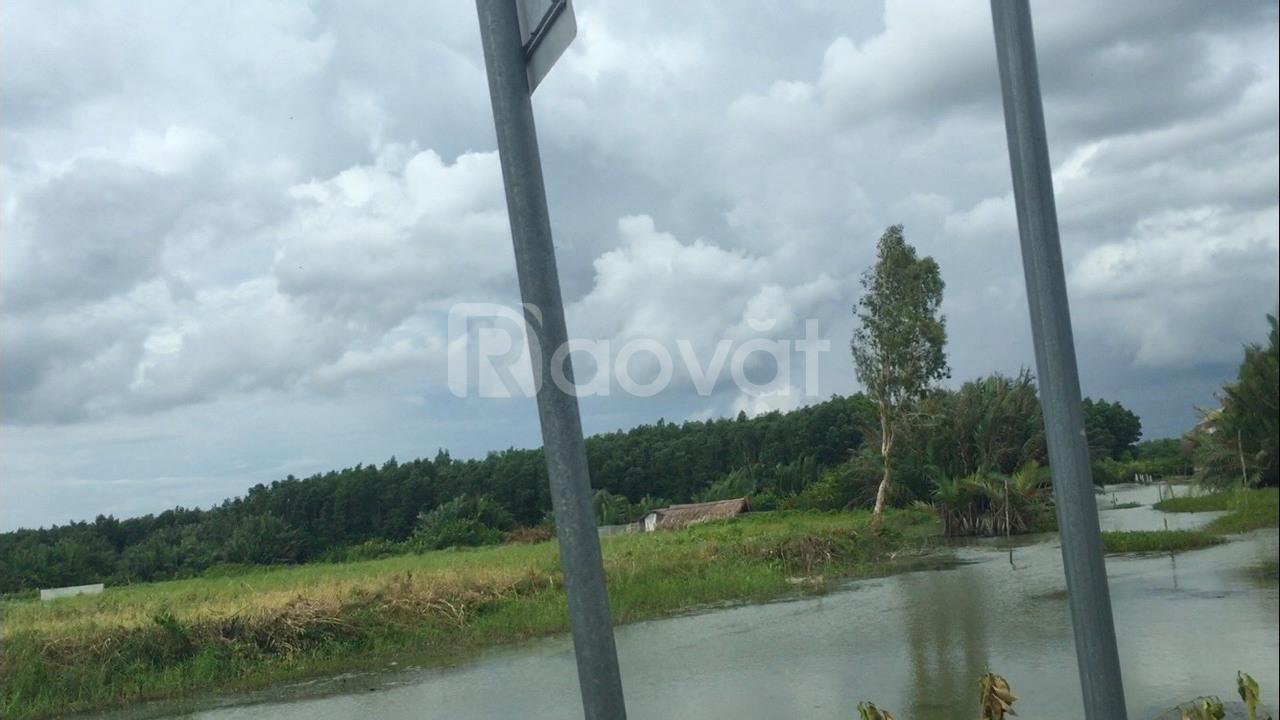 Đất Nhơn Trạch ven sông, xe hơi vào tận đất