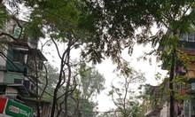Nhà phân lô Nghĩa Tân ngõ ô tô thông kinh doanh tốt 55m2, 5T, 6PN