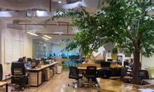 BQL cho thuê VP tại 170 Đê La Thành, tòa GP Invest giá 254k/m2