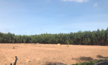 Cần bán gấp 1ha đất ở, xã Tân Hiệp, Long Thành, Đồng Nai, DT 9500m2
