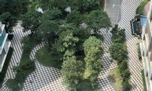 Căn góc chung cư Vinata Tower bán gấp