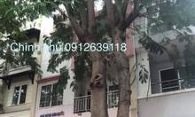 Chính chủ bán gấp nhà phố Phú Mỹ Hưng, Quận 7, sát Vivo city giá rẻ