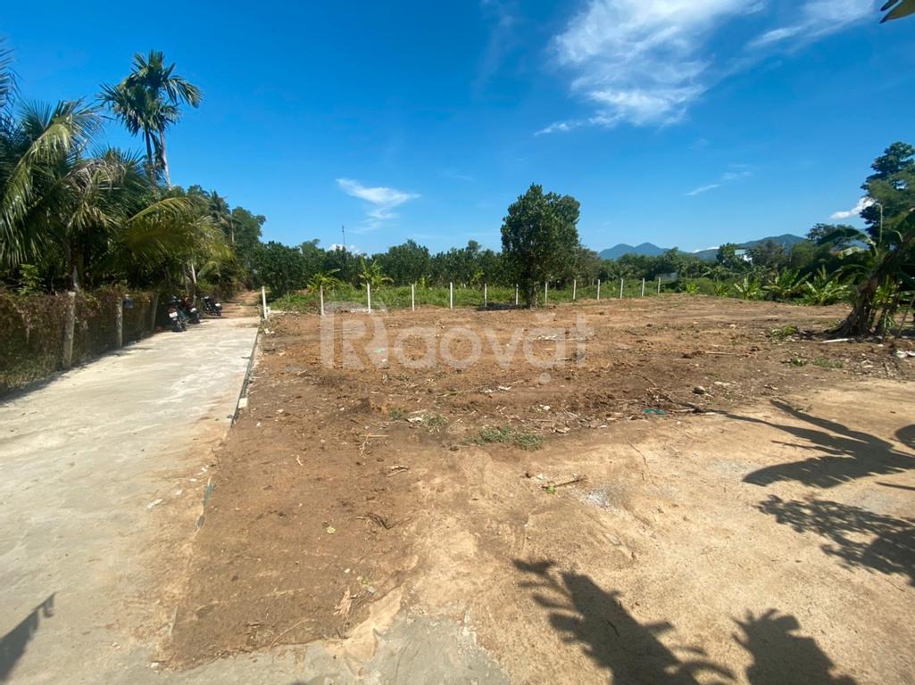 Bán lô đất cạnh đường Cao Bá Quát cách 300 mét thuộc  Diên Hòa