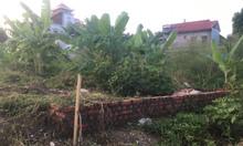 Cần bán lô đất 100m2 Vĩnh Khê, An Đồng, giá chỉ 13.8 tr/m2