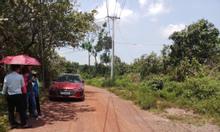 Bán lô đất vườn trồng xoài hơn 2000m2, ở Đồng Nai