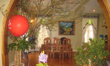 Biệt thự Vườn Đào 180 m2, 5 tầng