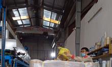 Băng keo bảo vệ bề mặt, màng Pe bảo vệ bề mặt tại Bà Rịa Vũng Tàu