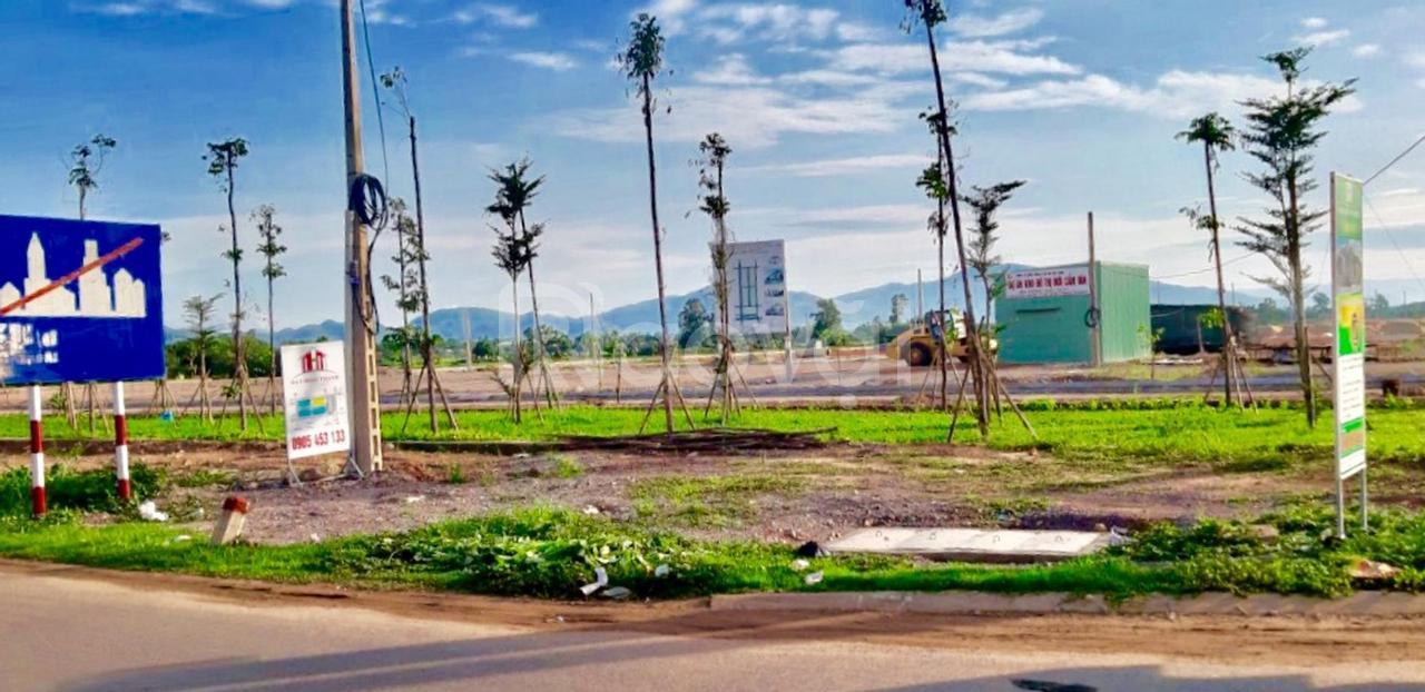 Bung giỏ hàng đợt 1 KĐT Cẩm Văn, An Nhơn, Bình Định