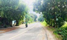 Cần bán gấp 359m2, đất phường Vĩnh Tân, gần KCN Vsip 2