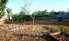 Chính chủ cần bán lô đất giá rẻ gần sân bay Long Thành, DT 14719m2