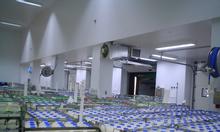 Lắp đặt kho lạnh bảo quản sữa tươi chất lượng