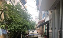 Nhà 5 tầng HXH Lạc Long Quân, P8, Tân Bình