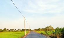 Bán gấp lô đất nông nghiệp, 1200m2, SHR, giá tốt ở Đất Đỏ, BRVT