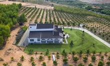 Bán 11816m2 đất nông nghiệp Hồng Thái, gần 2 đường liên huyện