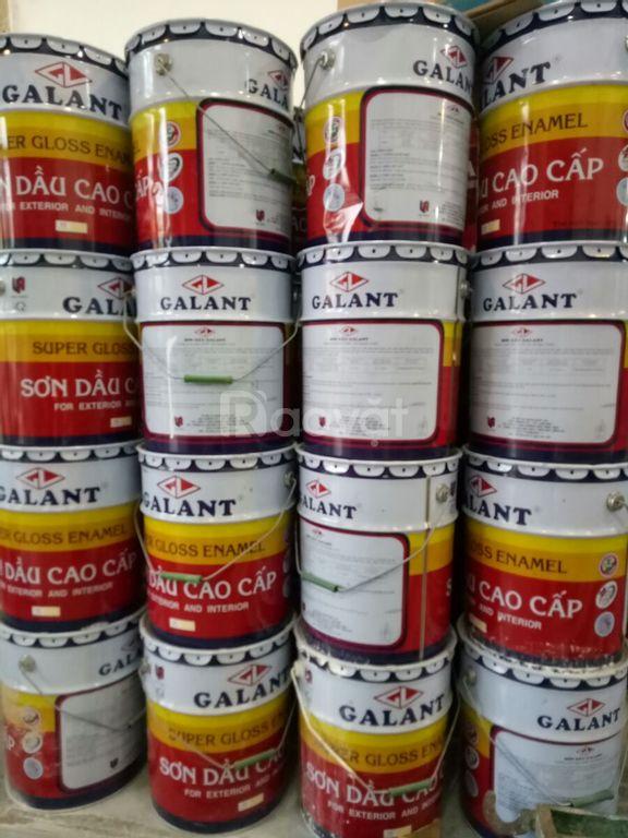 Cửa hàng bán sơn dầu Galant màu vàng 509 chính hãng giá rẻ tại TPHCM