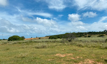 Bán 7982m2 đất nông nghiệp hồng thái, gần đường liên huyện đến sân bay