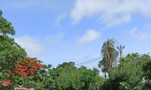 Bán đất tại khu đấu giá Ngọc Xuyên, Đồ Sơn, Hải Phòng