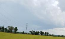 Bán 5103m2 đất vườn hồng thái gần đường liên huyện