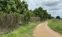 Cần bán nhanh lô đất 1100m2, ở  Định Quán, Đồng Nai