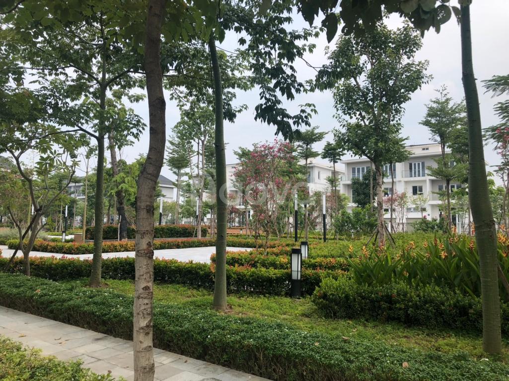 Biệt thự K1 Ciputra mặt đường Nguyễn Văn Huyên, giá đầu tư